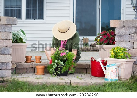 Elderly lady potting up new houseplants sitting on the steps of her patio in a wide brimmed sunhat transplanting seedlings into terracotta flowerpots - stock photo