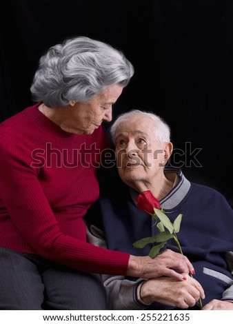 Elderly man, giving his wife a rose. Love in old age - stock photo