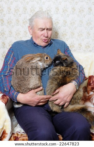 elderly man with bunny and cat - stock photo
