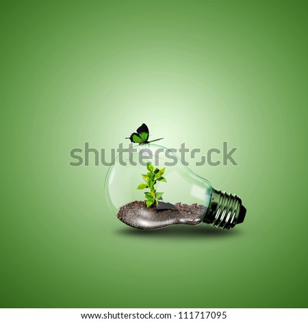 Electric light bulb and a plant inside it as symbol of green energy - stock photo