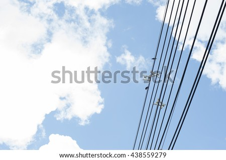 Electric line and blue sky.