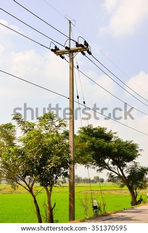 Electric pole on a country road With green rice And the blue sky With strong sunlight