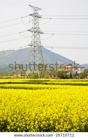 Electric pylon and  yellow farmland - stock photo