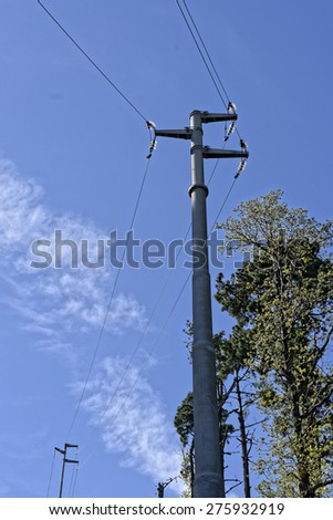 electric pylon in a meadow in la spezia