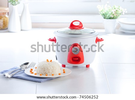 Electric steaming rice cooking pot the necessary kitchenware - stock photo