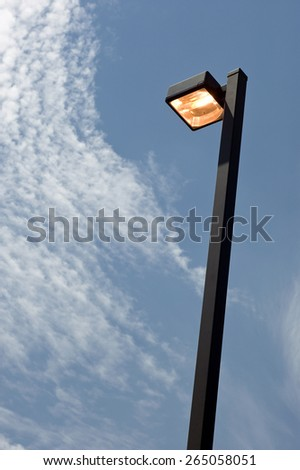 Electric Street Lamp Burning During The Day/Wasting Energy Using Electricity - stock photo