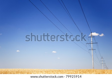 Electrical net of poles on a panorama of blue sky and wheat field - stock photo