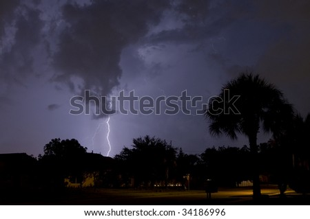 Electrical storm at night near homes with a palm tree in foreground - stock photo