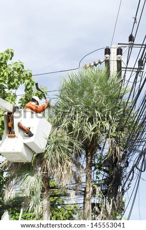 Electrician worker in cherry picker solve palm leaf and protect a wire of the power line - stock photo