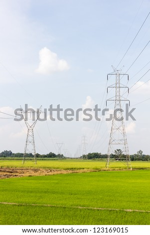 electricity high voltage power post in paddy field