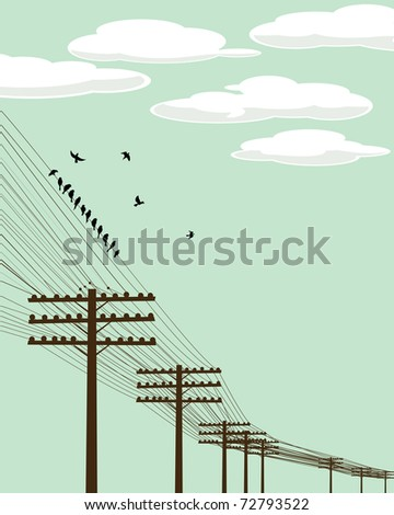 Electricity poles and birds silhouettes background illustration