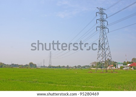 Electricity post and rice field