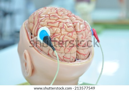 electromyography - stock photo