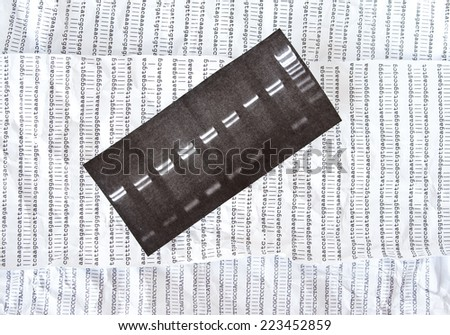 Electrophoresis picture on a crumpled DNA sequence background - stock photo