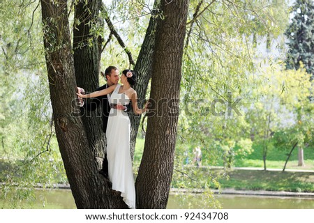 Elegant bride and groom kissing each other while standing in a tree in park - stock photo