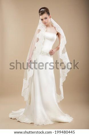 Elegant Bride in Veil and Wedding Dress posing - stock photo