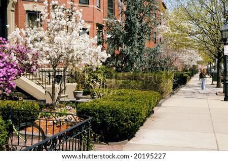 Elegant brownstones of Back Bay, Boston in the spring - stock photo