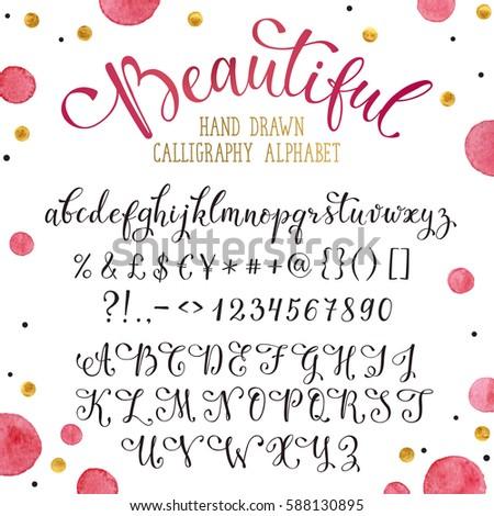 Elegant Calligraphy Letters Florishes Handwritten Alphabet