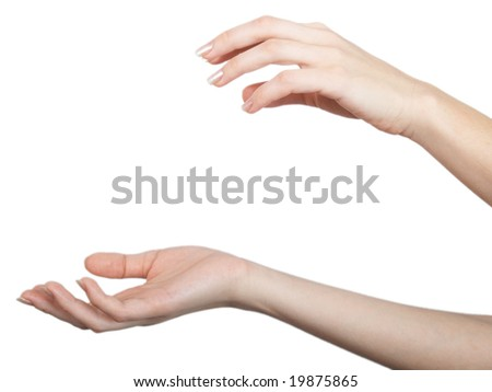 Elegant female hands in a beautiful composition on a white background