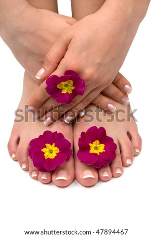 Elegant flowers manicured hands and pedicured feet - stock photo