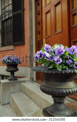 Elegant garden urn with purple pansies framing front door entrance - stock photo