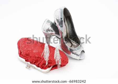 Elegant handbag and shoes for women - stock photo