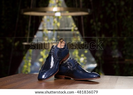 Elegant men shoes blue and bordeaux on beautiful background