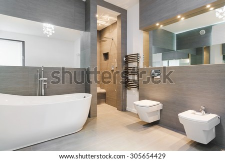 Elegant spacious bathroom decorated in classic style