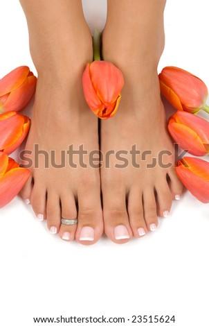 Elegant tulips and pedicured feet - stock photo