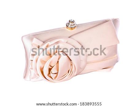 Elegant women clutch bag on white background - stock photo