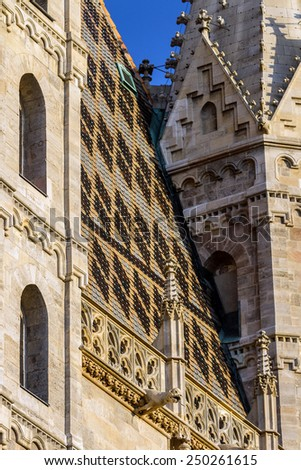 Element of architectural decoration of the Catholic Church of St. Stephen in the heart of Vienna in Austria under the setting sun. Roof, Crabbe and items - stock photo