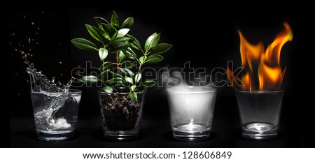 Elements of the nature in glasses - Natural concept - stock photo