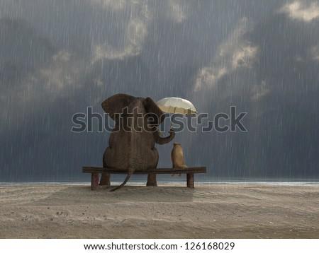 elephant and dog sit under the rain - stock photo