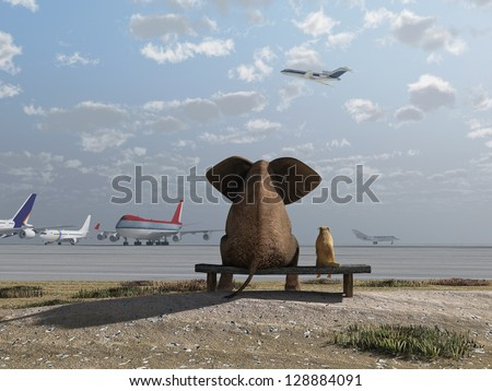 elephant and dog sitting at the airport - stock photo