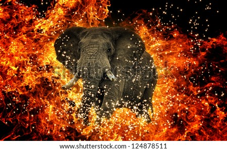 stock-photo-elephant-coming-out-of-fire-