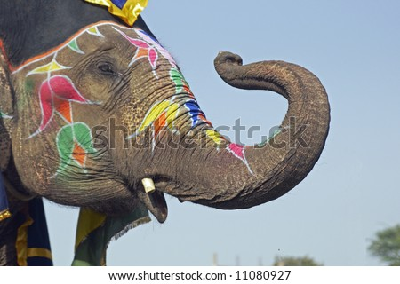 Elephant decorated with art work on its face saluting with its trunk at an elephant festival in India - stock photo