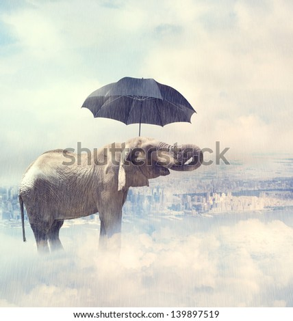 Elephant enjoying rain above the city on the clouds with a black umbrella - stock photo