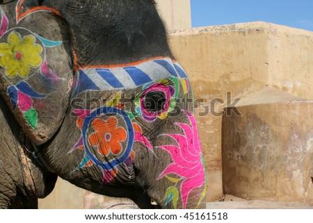 Elephant from Jaipur in India - stock photo