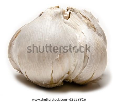 Elephant garlic on white background - stock photo