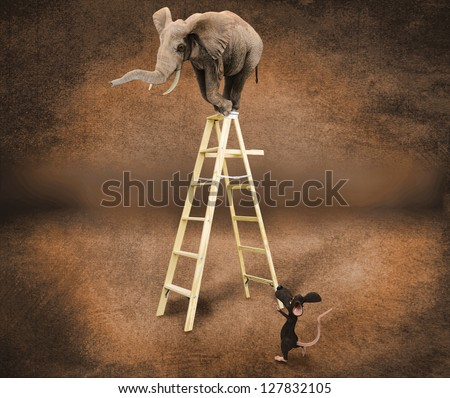 elephant in the scale with a mouse - stock photo