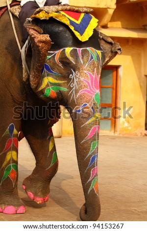 Elephant. India, Jaipur, state of Rajasthan. - stock photo