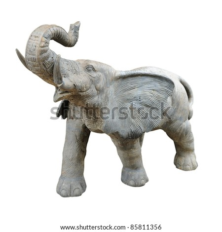 Elephant isolated against white background.