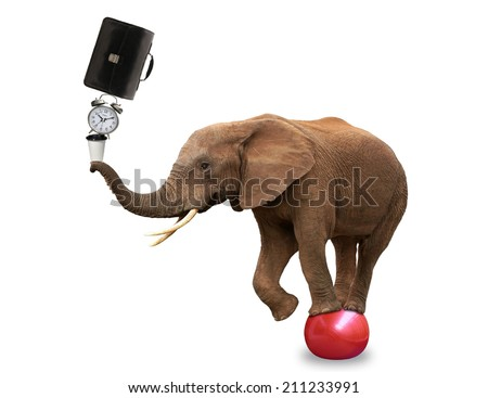 Elephant juggling briefcase, coffee and clock