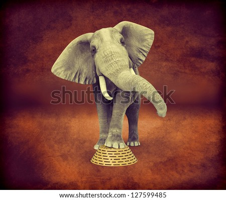 Elephant retro effect