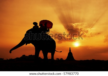 elephant silhouette in thailand - stock photo