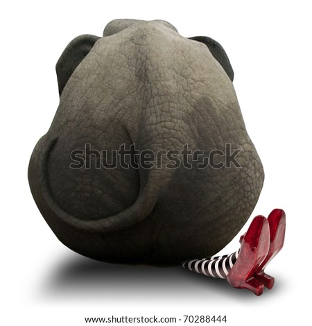 Elephant sitting on Wicket Witch - stock photo