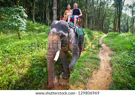 Elephant trekking in Khao Sok National Park, Thailand - stock photo