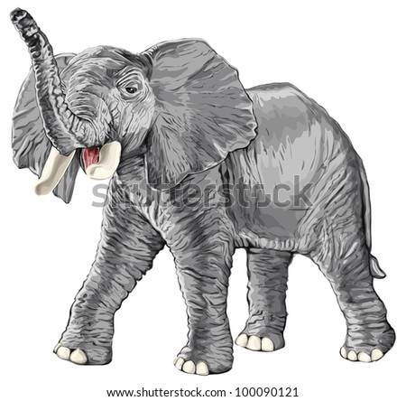 Elephant with raised trunk isolated on white background. Bitmap copy my vector