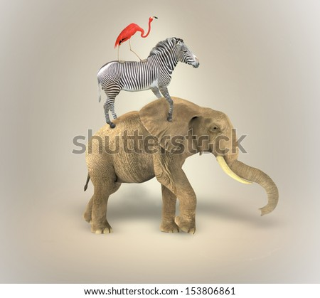Elephant Zebra and Flamingo