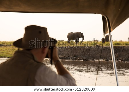 Elephants at Chobe River, Chobe National Park